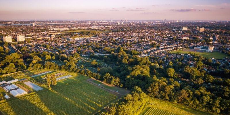 ademas de aprender Ingles aprovecha los parques y areas verdes de la ciudad y relajate